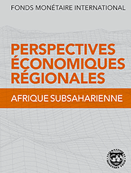 IMF: Regional Economic Outlook Update: Sub-Saharan Africa