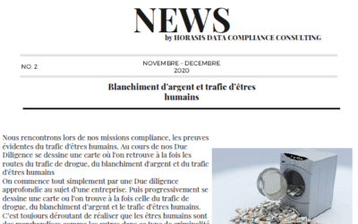 Newsletter / Horasis Data Compliance Consulting