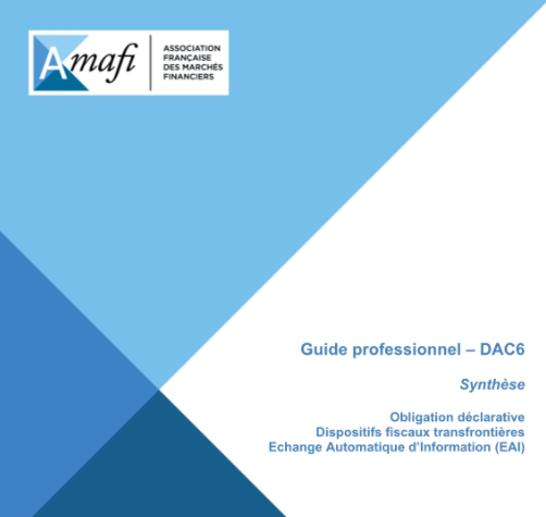 Guide professionnel DAC 6
